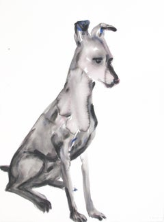 Untitled (Dog Sitting Looking Down)