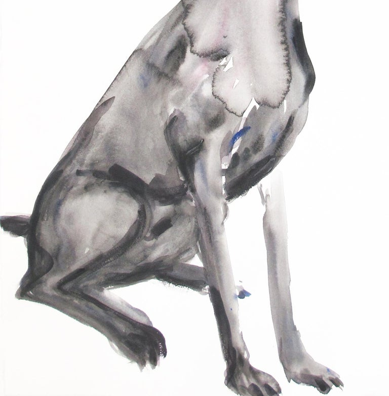 Untitled (Dog Sitting Looking Down) For Sale 2