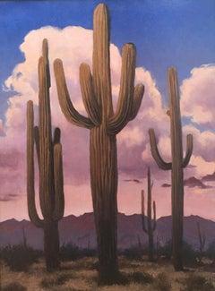 """""""Desert Evening"""""""