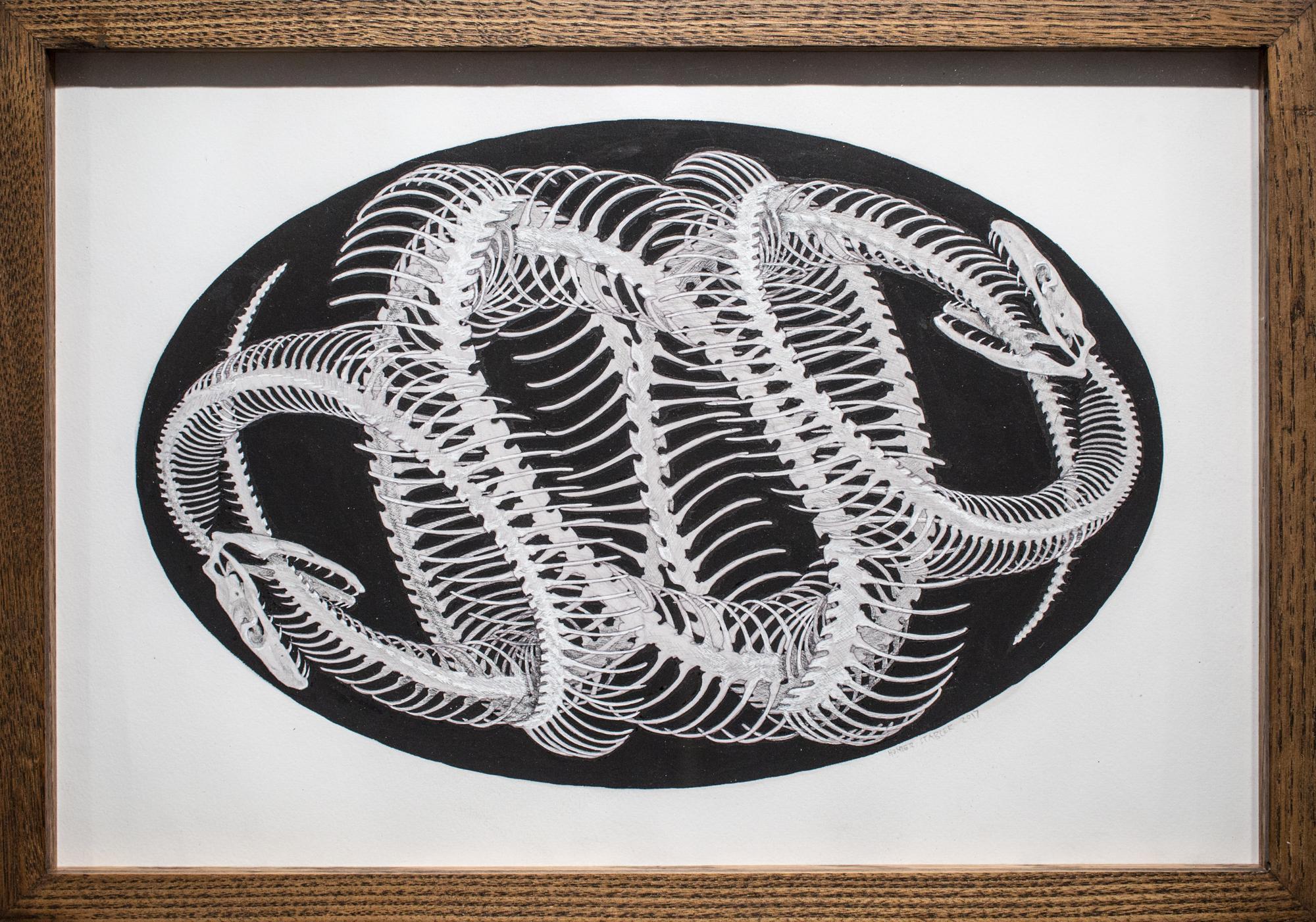 Umbilical Filigree Ovum (drawing)
