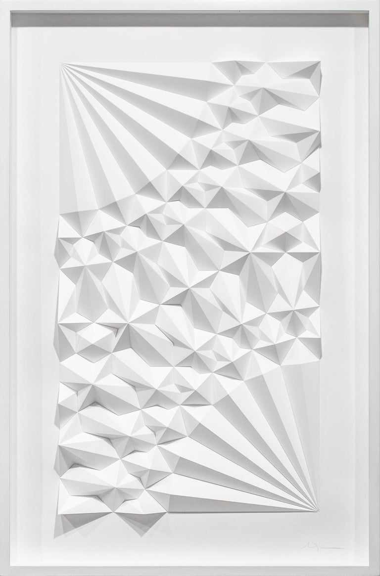 "This geometric, abstract, wall-hanging sculpture titled ""Ara 241"" is an original artwork by Matthew Shlian made of paper. Working at the forefront of technology and paper, the artist creates dimensional, geometric and abstracted forms which have the"