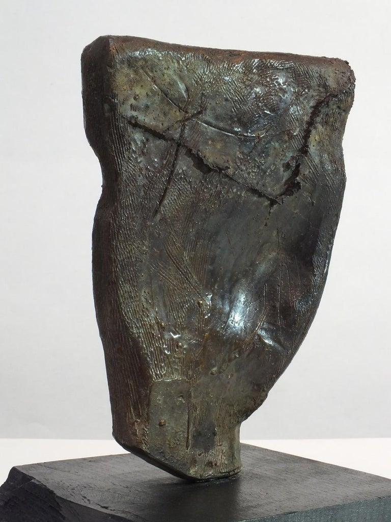 Sentinel 1,  Contemporary Cast Bronze Sculpture 3