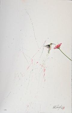 Hummingbird XIII