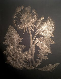 Dandelion, Small Botanical Drawing on Black Paper made with 14K Gold