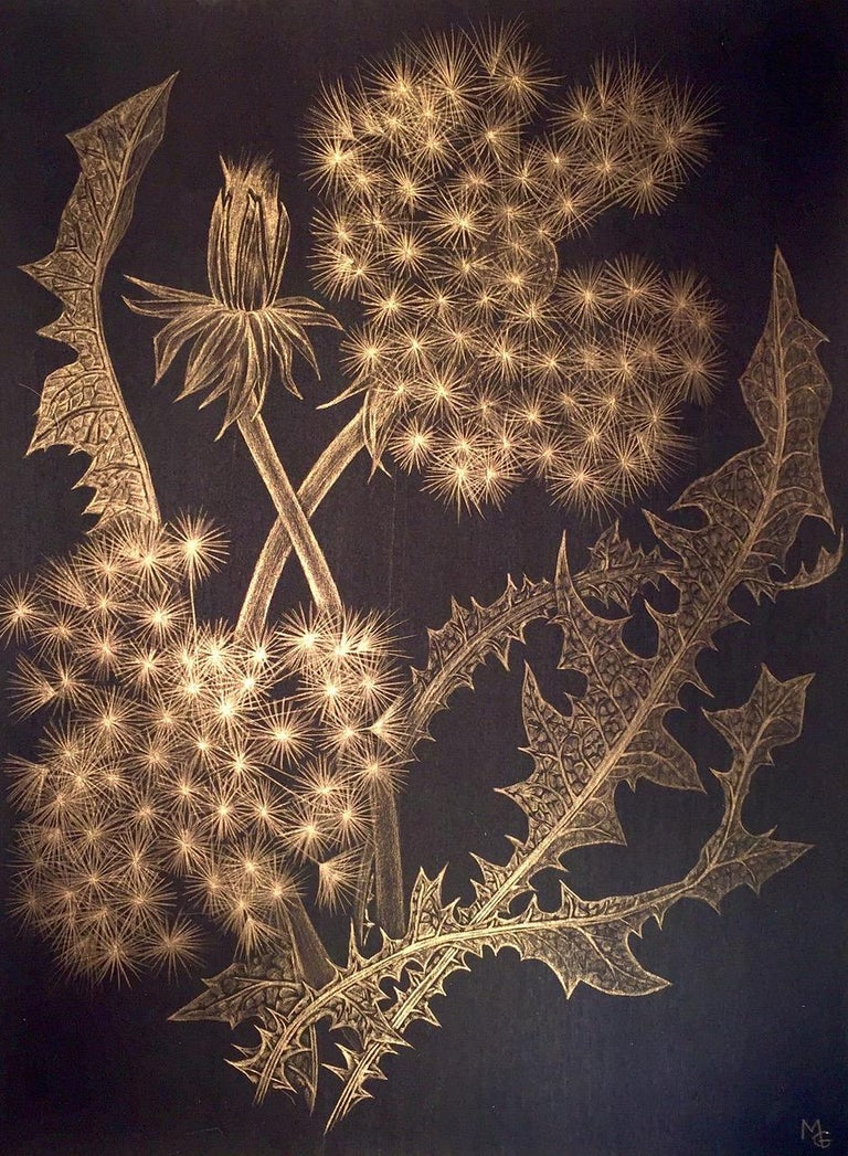Margot Glass Landscape Art - Dandelions with Bud, Small Botanical Drawing on Black Paper Made with 14K Gold