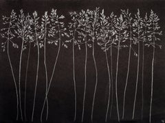 Grasses Two, Metallic Silver Botanical Drawing made with Graphite on Black Paper