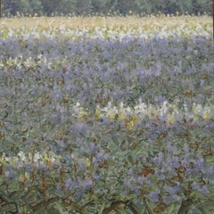 Revision, Square Botanical Landscape, Purple and White Flowers in Green Field