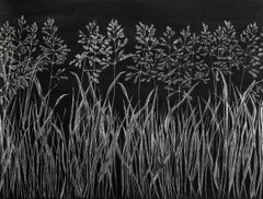 Grasses Six, Metallic Silver, Botanical Drawing with Graphite on Black Paper