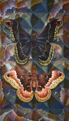 Acoustic Cloak Two, Nature Inspired Painting, Two Butterflies, Geometric Pattern