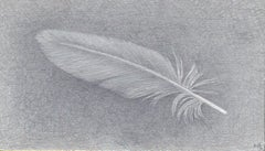 Dove Feather Two, Small Silverpoint Drawing of Feather in Soft Gray