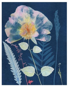 Cyanotype Painting, Peony, Ferns, Botanical Painting with Pink, Yellow on Blue