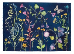 Cyanotype Painting Morning Glories, Rose of Sharon, Hellen, Flowers, Butterflies