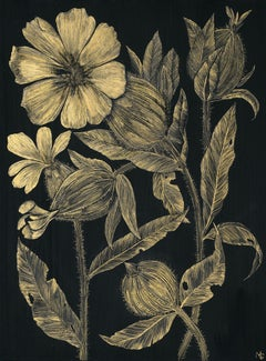 White Campion, Botanical Painting on Black Panel with Gold Flowers, Leaves, Stem