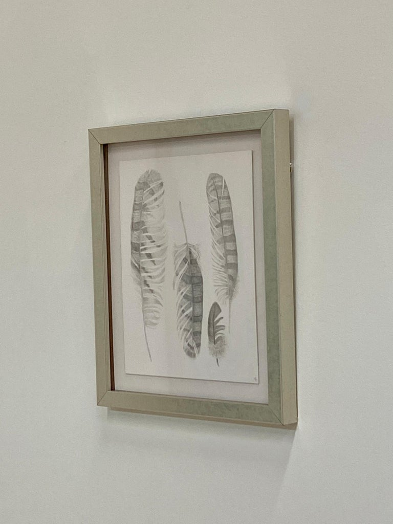 Feather Group Two, Silverpoint Drawing of Bird's Feathers in Soft Gray on White - Art by Margot Glass