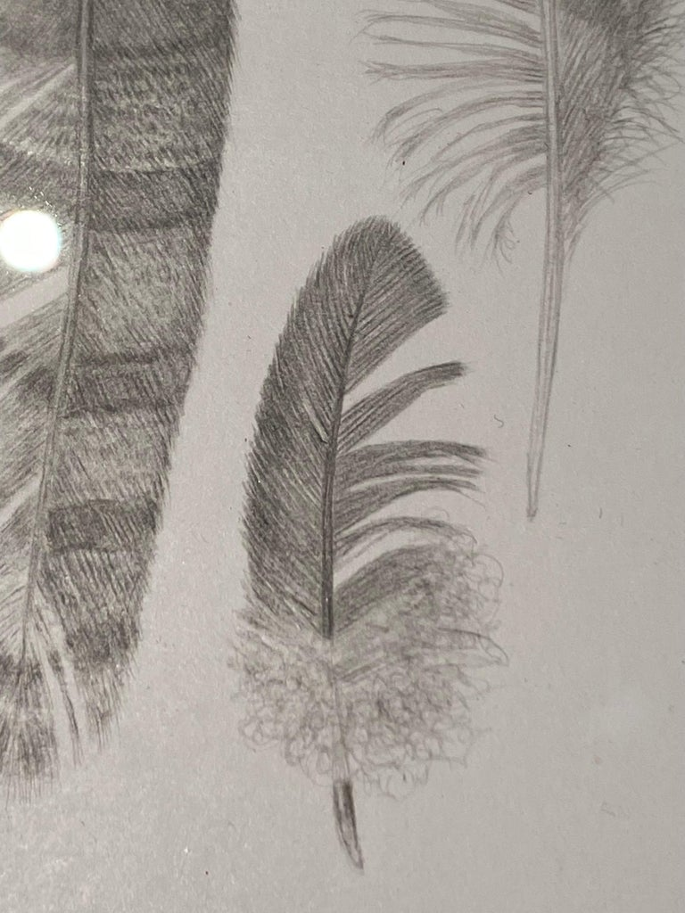 Feather Group Two, Silverpoint Drawing of Bird's Feathers in Soft Gray on White - Contemporary Art by Margot Glass