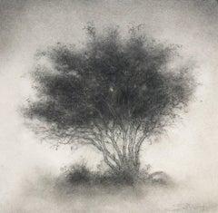 Little Scrap: Realistic Black & White Charcoal Tree Landscape Drawing, Framed