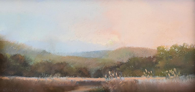 Iona Marsh (En Plein Air Landscape Pastel Drawing on Paper in a Gold Frame) - Brown Landscape Art by Judy Reynolds