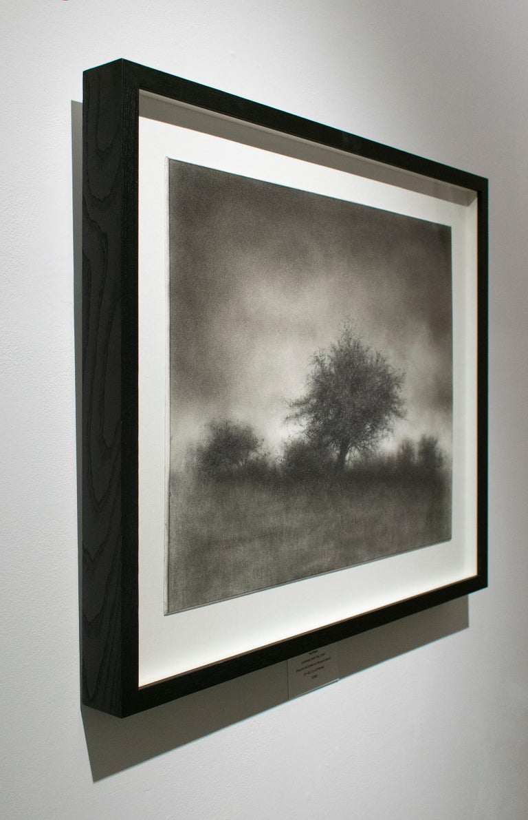 Landscape with Tree (Realistic Charcoal Drawing of Trees in a Rural Landscape) - Art by Sue Bryan