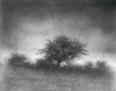 Landscape with Tree (Contemporary Charcoal Drawing of Rural Horizon)