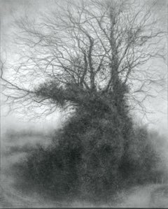 Rural Road 8 (Realistic Charcoal Landscape of a Tree on a Country Road, Framed)