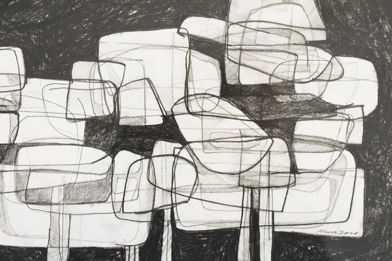 Waterlilies 22 (Abstract Figurative Graphite Drawing in Antique Black Frame) 1