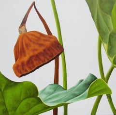 Lotus No. 35 (Photorealist Still Life Painting of Green & Brown Lotus Plant)