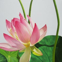 Lotus 33: Photorealist Still Life Painting of Pink & Green Lotus Flower on Blue