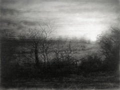 Field's Edge (Realistic Black and White Charcoal Landscape of Trees in a Forest