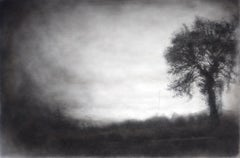 Roadside Tree (Realistic Black Charcoal Landscape Drawing of a Country Field)