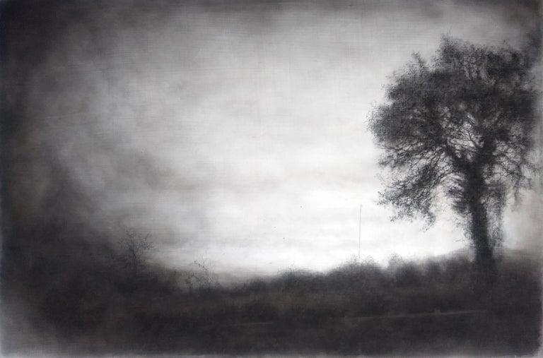 Sue Bryan Figurative Art - Roadside Tree (Realistic Black Charcoal Landscape Drawing of a Country Field)