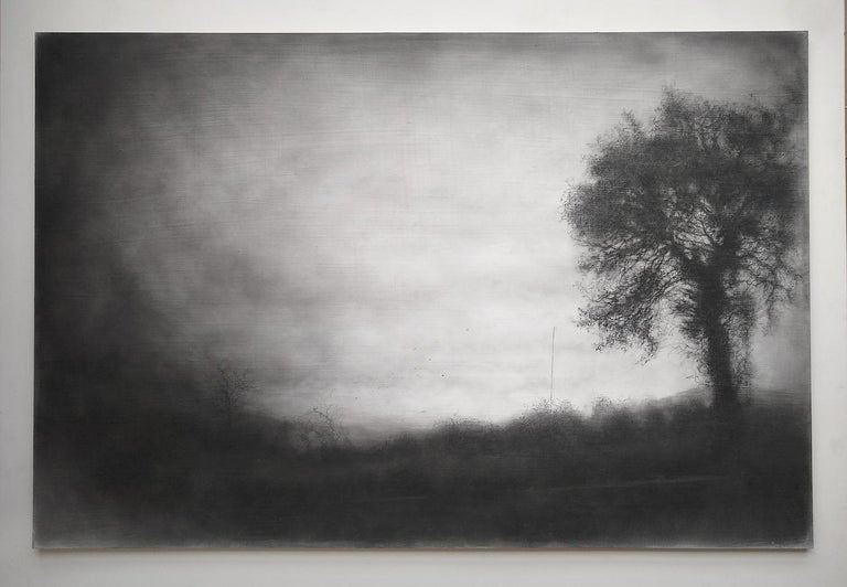 Roadside Tree (Realistic Black Charcoal Landscape Drawing of a Country Field) - Art by Sue Bryan