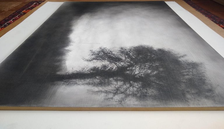 Roadside Tree (Realistic Black Charcoal Landscape Drawing of a Country Field) For Sale 3