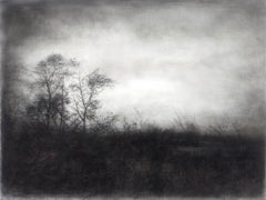 Vestigial Landscape (Whimsical Black and White Charcoal Landscape)