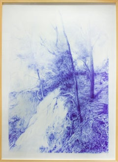 The Seen (Realistic Landscape Blue Ballpoint Pen Drawing of Forest & Waterfall)