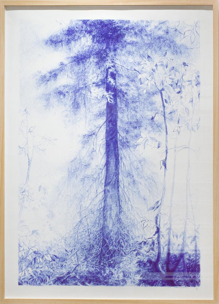 Branching (Blue Ballpoint Pen Landscape Drawing on Paper of Tree in a Forest) - Art by Linda Newman Boughton