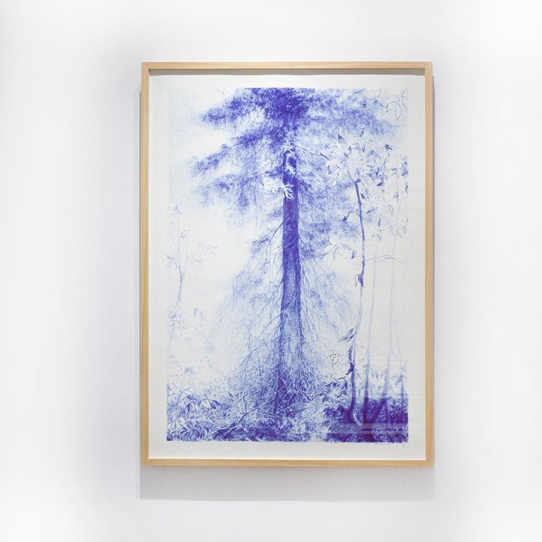 Branching (Blue Ballpoint Pen Landscape Drawing on Paper of Tree in a Forest) - Contemporary Art by Linda Newman Boughton