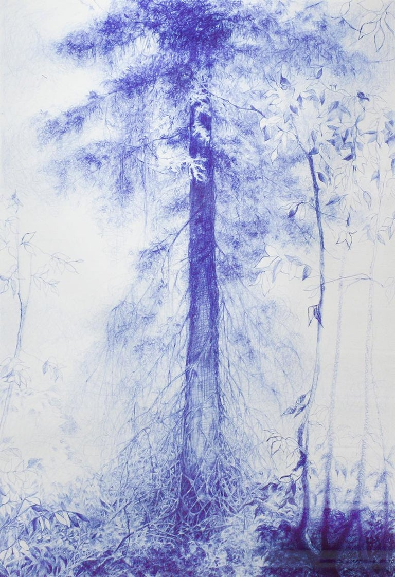 Linda Newman Boughton Figurative Art - Branching (Blue Ballpoint Pen Landscape Drawing on Paper of Tree in a Forest)