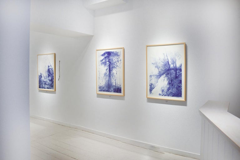 Branching (Blue Ballpoint Pen Landscape Drawing on Paper of Tree in a Forest) For Sale 1