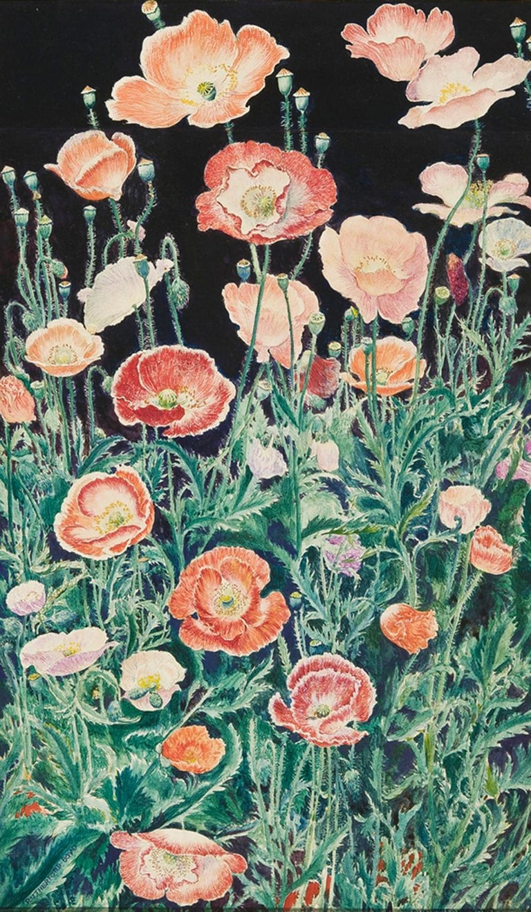 John Rutherford Boyd Landscape Art - Shirley Poppies