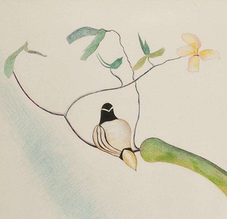 Two Wood Ducks on a Flowering Branch - American Modern Art by Joseph Stella