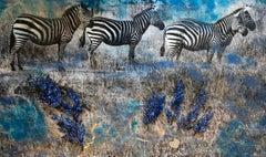 Blue Zebras
