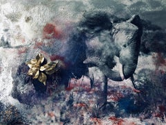 Dusting Elephant Amboseli