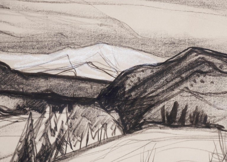 Untitled (New Mexico Landscape) - Beige Landscape Art by Doel Reed