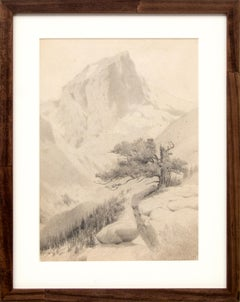 Mountain Peak and Twisted Pine, Vintage Early 20th Century  Colorado Landscape