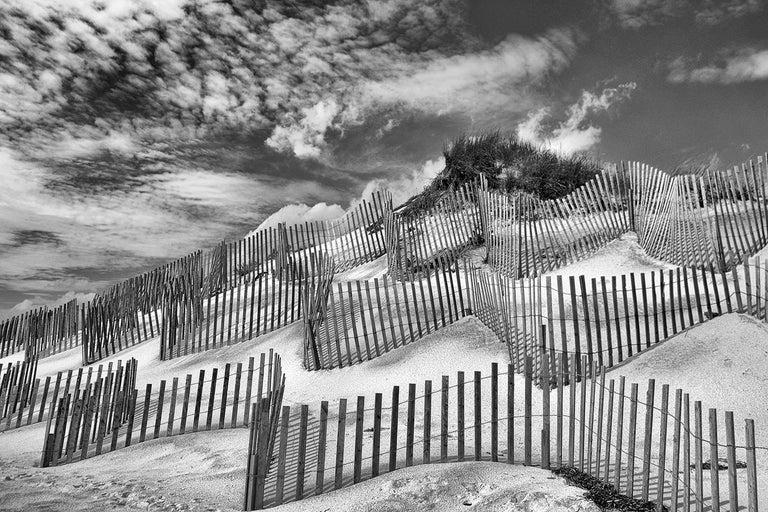 Great Dune - Art by Paul Dempsey