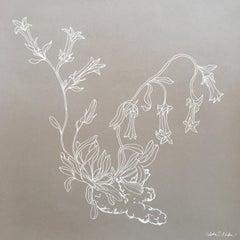 Bellflower line drawing .04