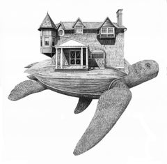 Moran's Turtle