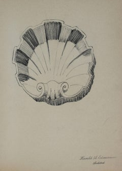 Seashell Architectural Detail Drawing in Graphite, 1920s