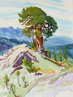 """Ancient Juniper"" Watercolor on Paper"