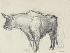Mexican Bull in Graphite, Circa 1947